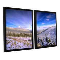 Winter Lands II by Dragos Dumitrascu 2 Piece Floater Framed Photographic Print on Canvas Set
