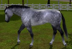 Sims 3 Realistic Horse | 3,588 Views