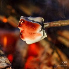 What is not to love about toasted marshmallows? Follow link to find book on Amazon #comfortfood #hygge #twitter www.amazon.co.uk/dp/5274729193