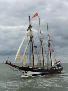 ctsuddeth.com: Oosterschelde sail out 2014