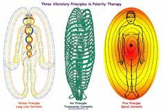 Polarity Therapy~ beginning student is introduced to the notion that all life is an expression of energy in motion; that energy emerges from & returns to a central unified source of life energy. Energy in body is a manifestation of the cyclic journey of spirit: cosmic unified source > the duality of the physical realm > back to its source... The theory is further delineated with the formation of the three primary principles of motion as Sattva (Air), Rajas (Fire), and Tamas (Water).