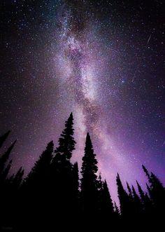 ˚The Milky Way traverses the sky in Mt. Rainier National Park, Washington, near Reflection Lake
