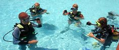 Complete padi divemaster course in thailand and be a scuba diving trainer. Our PADI Thailand divemaster course run at beautiful island of koh samui owned by PADI 5 Star Dive Centre. http://www.idc-thediveacademysamui.com/divemaster-course-info.html
