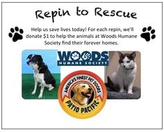 Repin & Rescue! For each repin, we'll donate a dollar to help save lives at Woods Humane Society. Share today and help us spread the word. See official campaign details here: http://groov.co/QGscBe. #rescuerepin