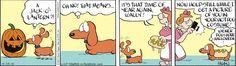 dachshund hate | dachshunds hate hallowien | dog stuff