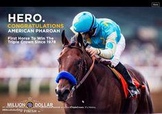 Million $ horse