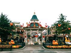 Disneyland Paris for young adults