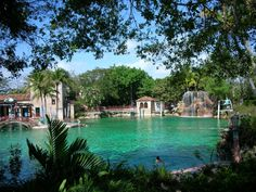 Need to do #1, 3, 5, and 8! 10 Surprising Things You Never Thought About Doing In Florida