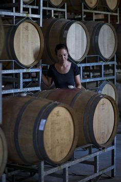 Hidden Valley Wines, Wine Estate, Stellenbosch, Cape Town. 3 e-books runs to over 800 pages in total. A Travel Guide, a Wine Guide and a Restaurant Guide. Read more about the books at: http://pepperpublishing.no/english The travel guide & Restaurant Guide are available now on Amazon, Itunes Ibooks, Google Books, and Barnes & Noble. The Wine Guide will be available early 2016. Photo: http://www.rwasserfall.co.za/