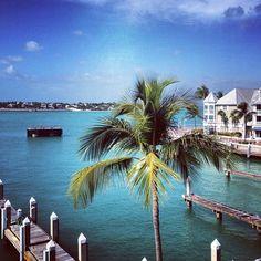 Gorgeous photo from The Westin Key West Resort & Marina!
