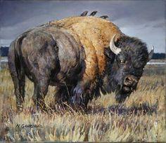 Wildlife Paintings, Wildlife Art, Animal Paintings, Animal Drawings, American Bison, American Indian Art, Native American Art, Majestic Animals, Rare Animals