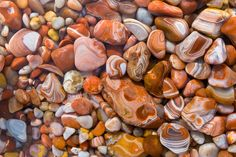 All of the Great Lakes have rocks and fossils that are full of history and beauty. Enjoy collecting Lake Superior agates, Petoskey Stones, and so many more! Minerals And Gemstones, Rocks And Minerals, Rock Tumbling, Lake Superior Agates, Rock Hunting, Petoskey Stone, Beautiful Rocks, Rock Collection, Rocks And Gems