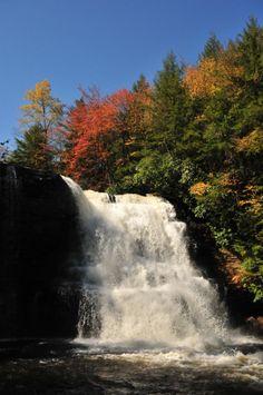 Peaceful walks through Swallow Falls State Park! #deepcreeklake #mothernatureisgood