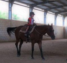 Dove+portare+i+bambini+a+cavallo Mamma, Horses, Dreams, Animals, Animales, Animaux, Animal, Animais, Horse