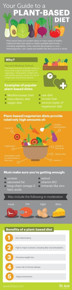 Plant-based diet guide - Dr. Axe http://www.draxe.com #health #holistic #natural