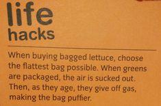 safe lettuce