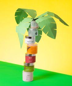 ✖ art direction | wendy vansanten palm tree