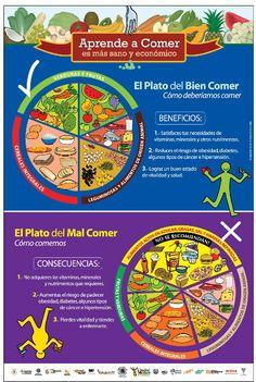Ayuda a valorar la alimentación y clasificar alimentos en el plato del bien comer o el mal comer.