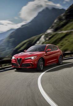 Alfa Romeo has finally revealed the Stelvio, their long-awaited SUV model at the Los Angeles Auto Show in top Quadrifoglio-spec