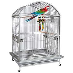 This Rio Grande Dome Top Parrot Cage is perfect for larger Parrots, with feeder doors, perches and more. Check it out now. Pet Bird Cage, Bird Cages, Parrot Cages For Sale, Parrot Perch, Amazon Parrot, African Grey Parrot, Parrot Toys, Gym Tops, Conure