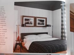 Color, SW Blck Fox on ceiling, white paneled walls, buffalo check drapes, industrial nightstand, http://www.mbzinteriors.com