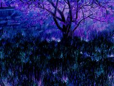 """Purple Magistree"""