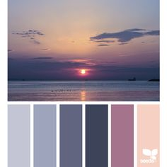 Flora Palette ❤ liked on Polyvore featuring colors and backgrounds