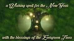 Magical Recipies Online | A Wishing spell for the New Year with the blessings of the Evergreen Trees
