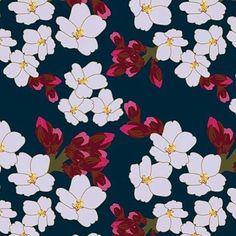 teresa.chan.rogol -  Cherry blossoms.