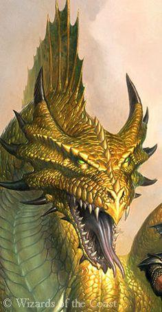 Elder Bronze Dragon Real Form Kepeskner (StormSpear) and Iskixen (Starfire) Dnd Dragons, Cool Dragons, Dungeons And Dragons, Bronze Dragon, Gold Dragon, Yellow Dragon, Dragon Head, Magical Creatures, Fantasy Creatures