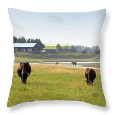 Keep Calm And Stay Here Throw Pillow by Svetlana Svetlanistaya  #Svetlanistaya #Landscape #Cows #Rustic #Rural #Summer #ThrowPillow #HomeDecor #InteriorDesign