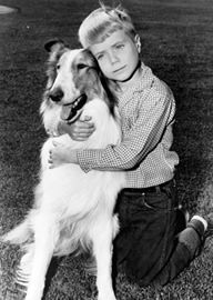 Here we have Timmy and Lassie, he was so cute. Do you remember Jeff, who was in the original Lassie shows boy. Photo Vintage, Vintage Tv, Vintage Candy, Nostalgia, Sean Leonard, Old Shows, First Tv, Dog Memorial, Classic Tv