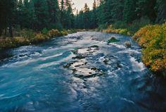 The Metolius River at the Wizard Falls Bridge and Fish Hatchery
