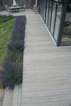 Emotive Landscapes Composite Decking Cheltenham garden design - All About Landscaping Around House, Landscaping Tips, Garden Landscaping, Landscaping Contractors, Landscaping Melbourne, Back Gardens, Outdoor Gardens, Deck Design, Garden Design