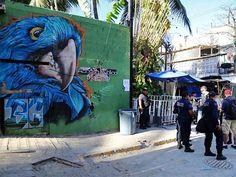 Agresor actuó solo en tiroteo de bar en Playa del Carmen: Fiscalía | El Puntero
