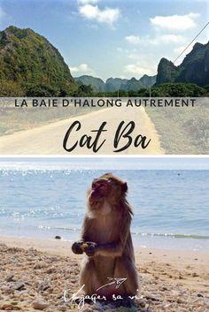 Visiter la Baie d'Halong sans les milliers de touristes, c'est possible. C'est à Cat Ba qu'il faut aller! #vietnam #halongbay #backpackers #voyage #catba #halong