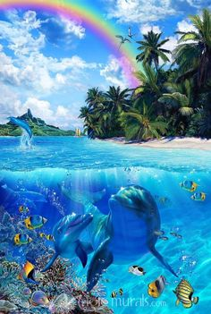 Glorious Daylight II by Christian Riese Lassen mural at Magic Murals. Dolphin Images, Dolphin Art, Underwater Painting, Underwater World, Sea Life Art, Ocean Life, Beautiful Nature Wallpaper, Beautiful Ocean, Paradise Pictures