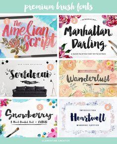 premium brush fonts