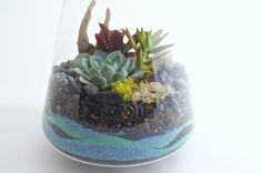 How to make a sand terrarium