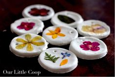 Our Little Coop: Pressed Flower Ornaments Sustainable Farming, Urban Farming, Diy Crafts For Kids, Art For Kids, Recycle Crafts, Oak Meadow, Urban Chickens, Pressed Flower Art, Flower Ornaments