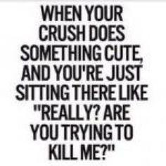 30 Crush Quotes