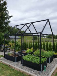 Backyard Vegetable Gardens, Potager Garden, Vegetable Garden Design, Greenhouse Gardening, Hydroponic Gardening, Outdoor Gardens, Garden Path, Garden Planters, Garden Cottage