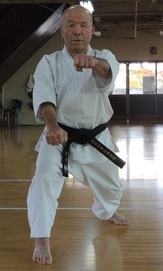 Resultado de imagen de 合せ突き Martial Arts, Harem Pants, Fashion, Moda, Harem Trousers, Fashion Styles, Harlem Pants, Combat Sport, Fashion Illustrations