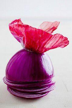La belleza de una cebolla morada
