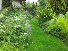 Beautiful Gardens, Stepping Stones, Bali, Outdoor Decor, Plants, Home, Minden, Gardens, Tattoo Art