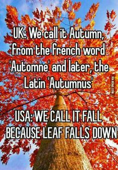 UK:We call it Autumn, from the french word Automne' and later, the Latin 'Autumnus'  USA:WE CALL IT FALL BECAUSE LEAFS FALL DOWN