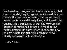 Anita Mikac quote programming conspiracy illuminati -c58.jpg