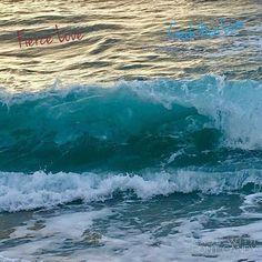 #BeLove #LOA  #lifecoach #celebcoach  #musician #singer #entrepreneur #ceo  #creative-types  #painter  #performer #inventor #lajolla #artists #doctors #plasticsurgeon #actorslife #athletes  #speaker #designer  #surgeons #nurses #entrepreneur  #dancers  #zazucoaching #coachnorilove #feelings #dogs #director  #lawofattraction #ucsd #lajollalocals #sandiegoconnection #sdlocals - posted by Nori Love  https://www.instagram.com/zazu_inspiration. See more post on La Jolla at…