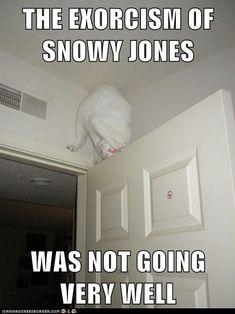 SOOOOO Funny!!