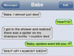 I freakin' hate spiders!